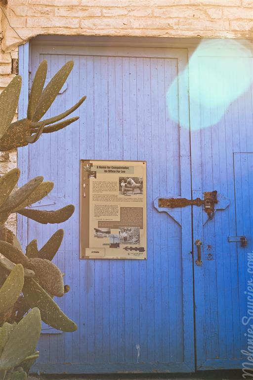 Carrillo_Ranch-6 (Medium).jpg