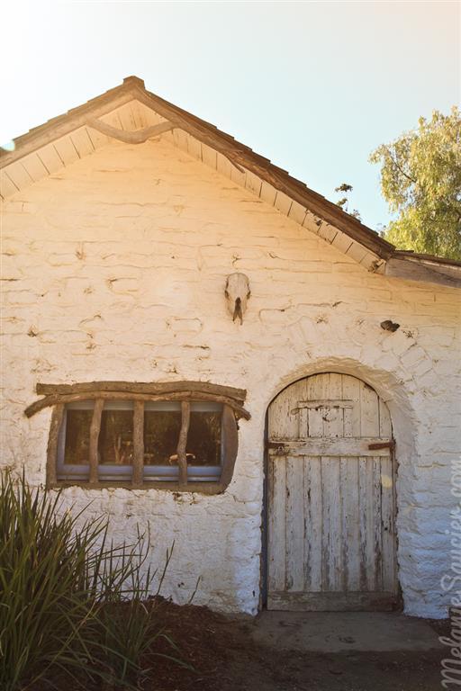 Carrillo_Ranch-23 (Medium).jpg