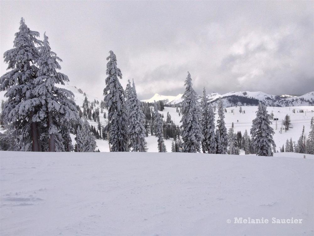 Squaw Valley-11 (Large).jpg