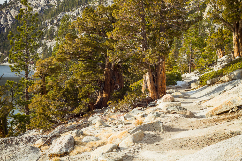 Echo_Lakes_Tahoe-17.jpg