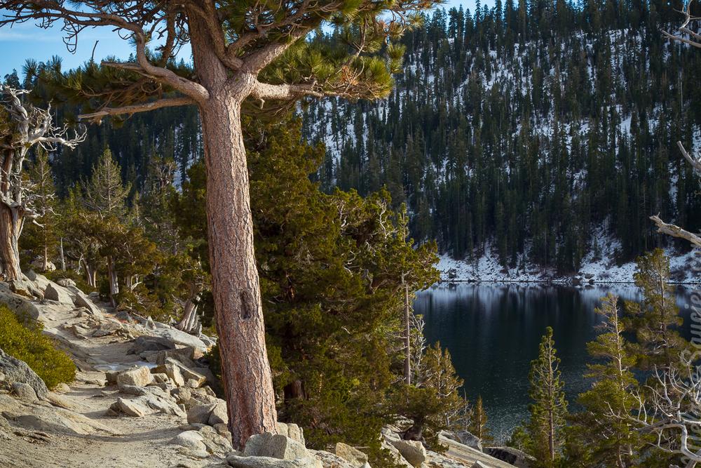 Echo_Lakes_Tahoe-23.jpg
