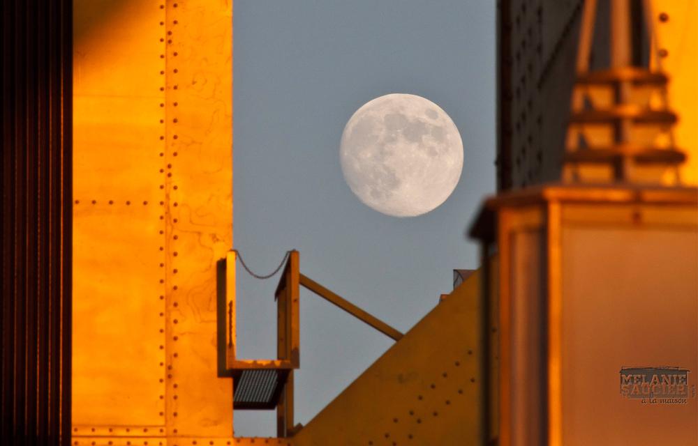 Moon_1600x1024.jpg