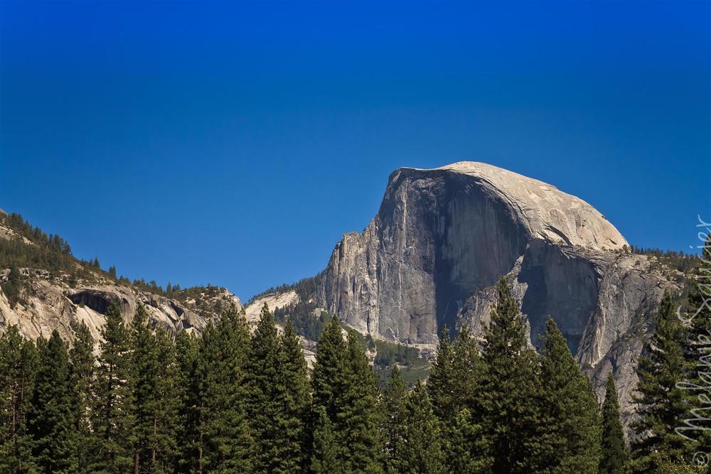 Yosemite (26).jpg