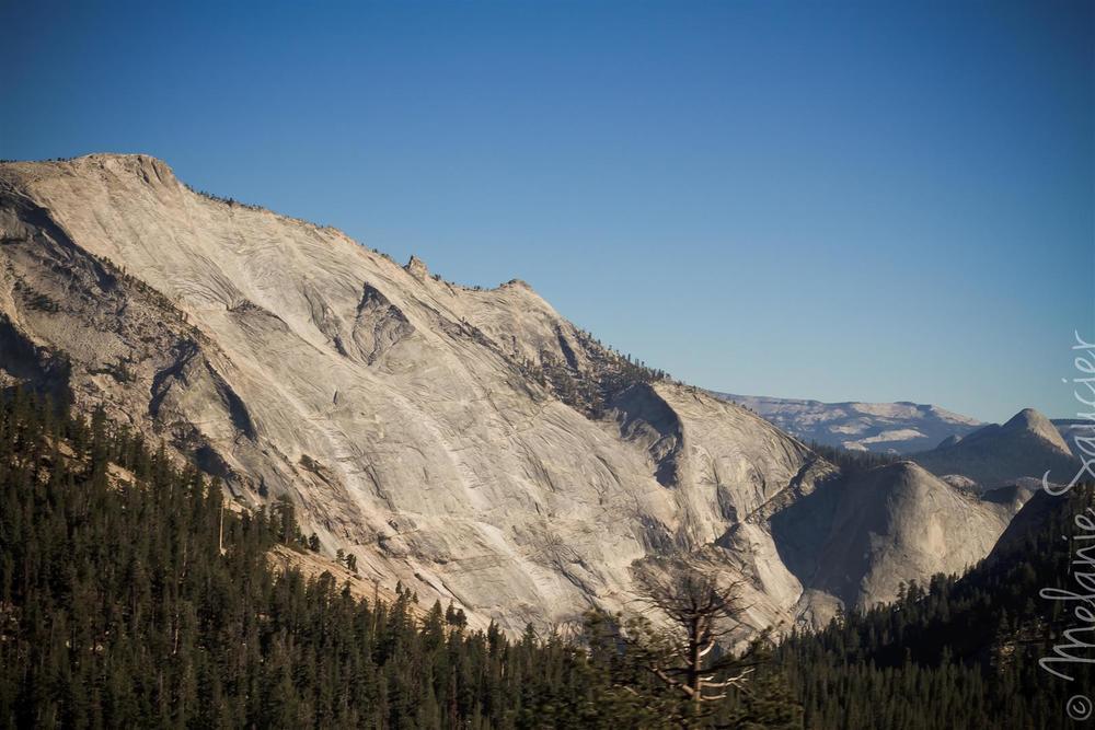 Yosemite (23).jpg