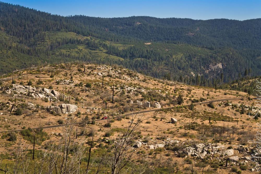 Yosemite (38).jpg