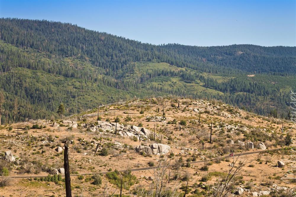 Yosemite (36).jpg