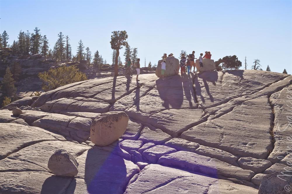 Yosemite (34).jpg