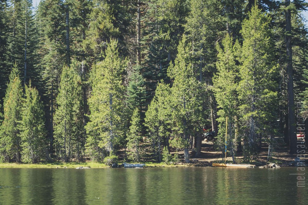 Utica_Reservoir_NorCal-4.jpg