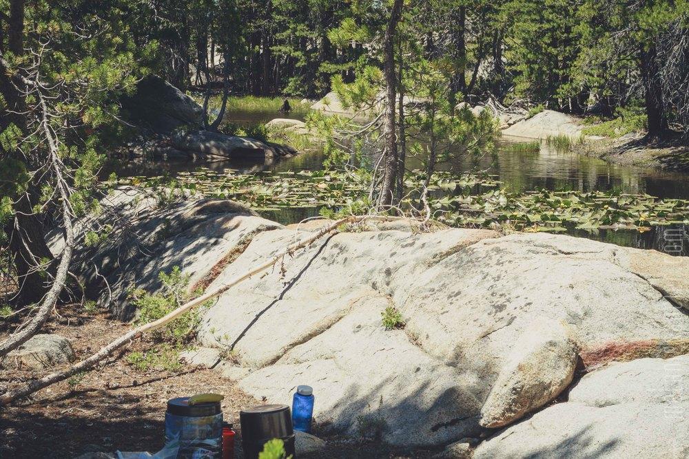 Utica_Reservoir_NorCal-19.jpg