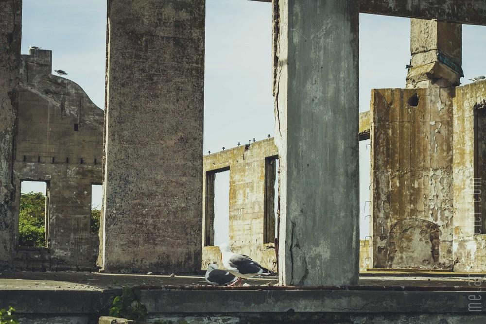 Alcatraz-31.jpg