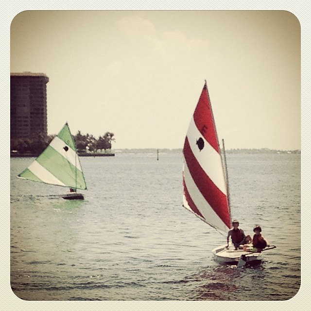 #summercamp has begun @justsailmiami #miami 's premier #sailingschool on #biscaynebay We are located @ the #ussailingcenter  in #coconutgrove #ussailing #sailing #sunfishsailing #lasersailing #laserperformance