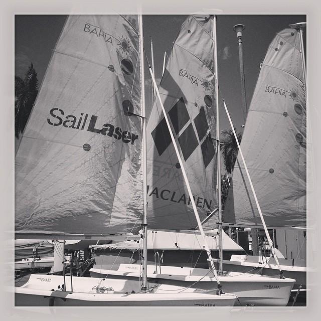 #laserbahia #laserperformance @justsailmiami #ussailingcentermiami #coconutgrove #miami #sailing #sailingschool