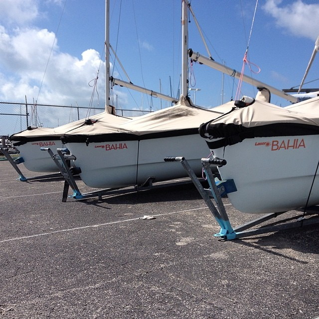 The flight line @justsailmiami #sailing #sailingschool #laserperformance #laserbahia #ussailing #ussailingcenter #miami #coconutgrove #pro #gametight