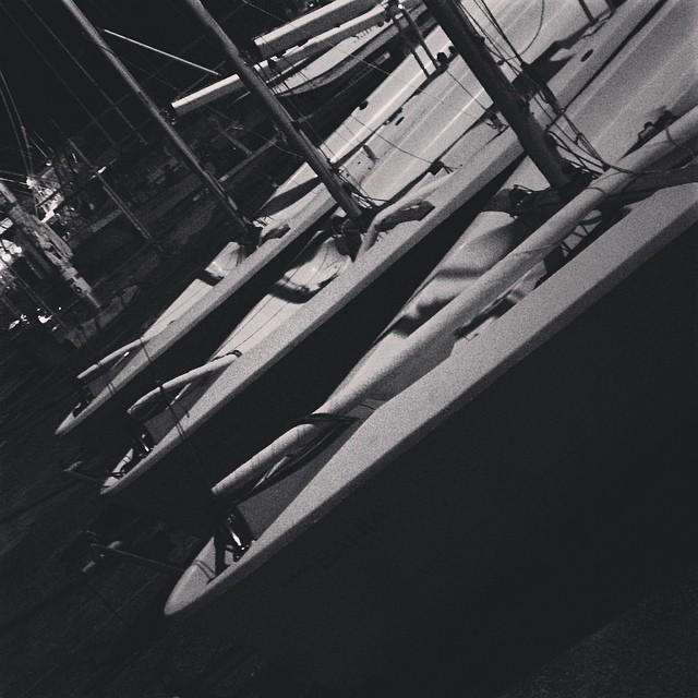 @justsailmiami #ussailingcenter #coconutgrove #miami #sailing #sailingschool #laserperformance
