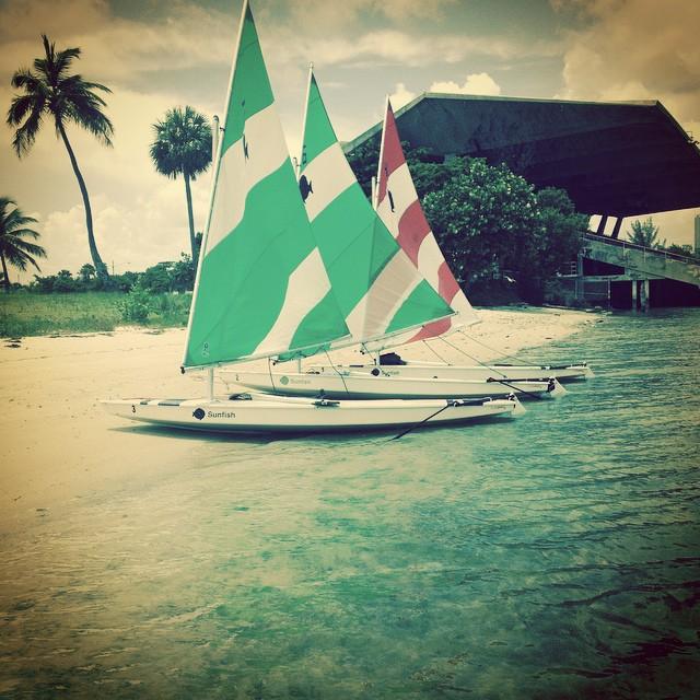 Destination sailing @justsailmiami #miami #marinestadium #sailing #sailingschool #sunfish #sunfishsailing #biscaynebay #laserperformance #ussailing #ussailingpics #ussailingcenter