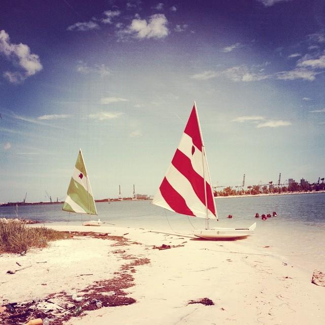 Paradise found @justsailmiami #sailing #sailingschool #sunfishsailing #laser performance #biscaynebay #miami #summersailing #summercamp