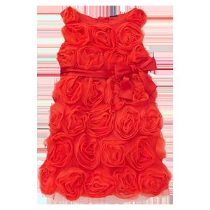 Rosette Tulle Dress