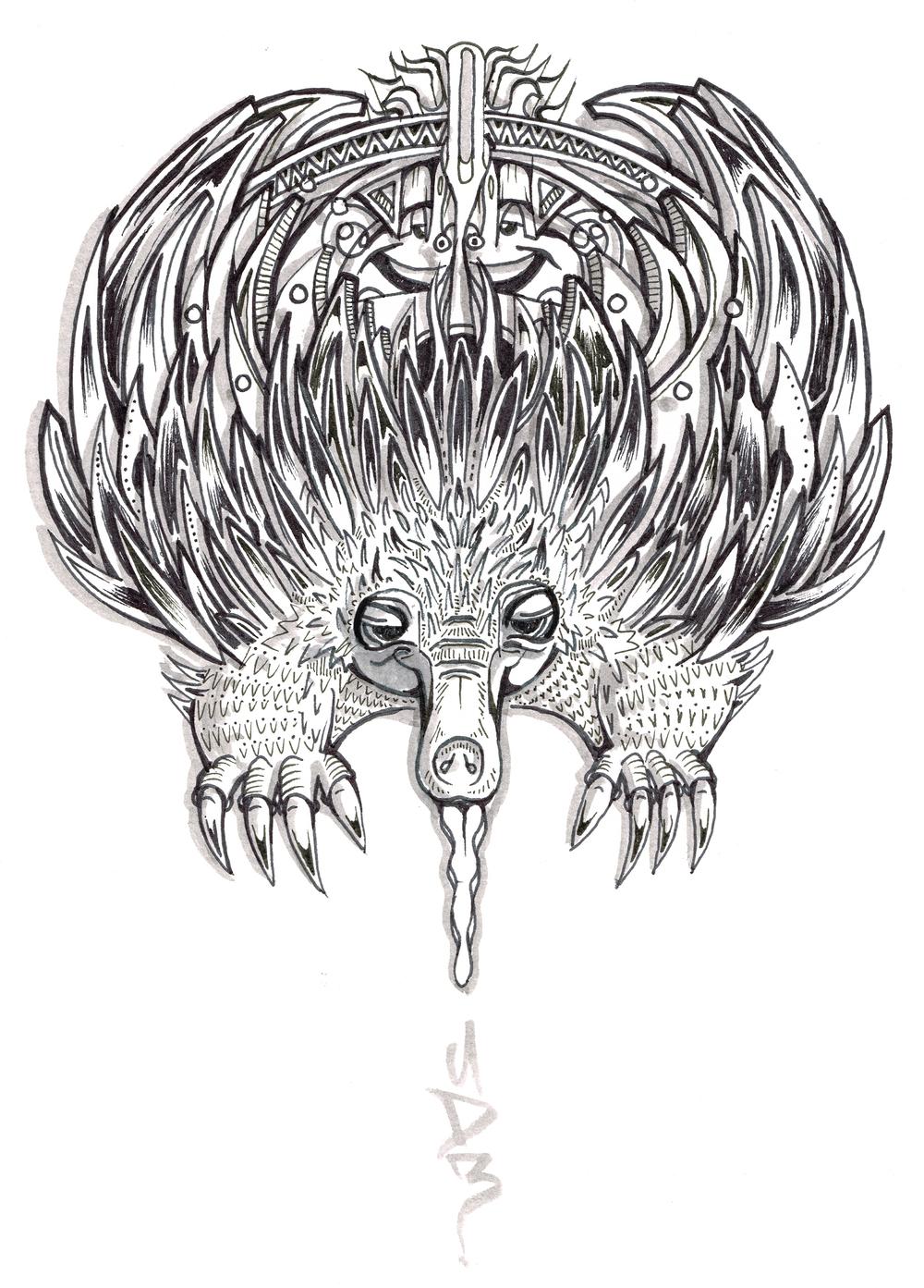 echidna drawing