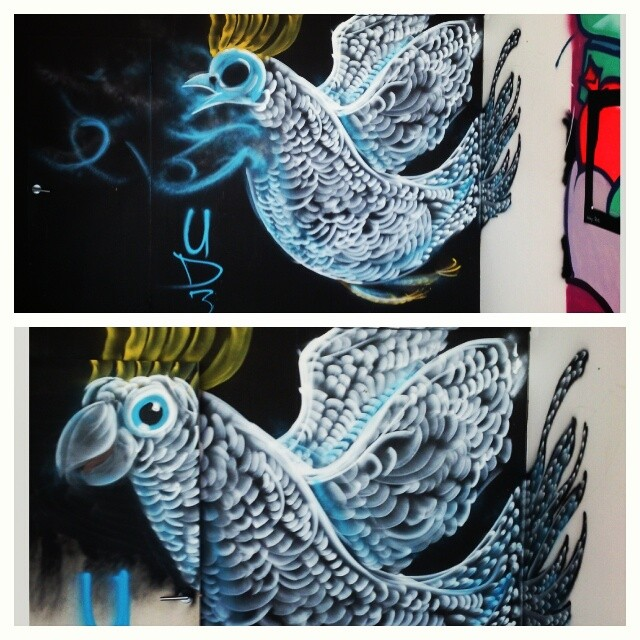 The cockatoo xray door I painted yesterday at Work-Shop demolishion spray day. Making use of the site. #streetart #mtn