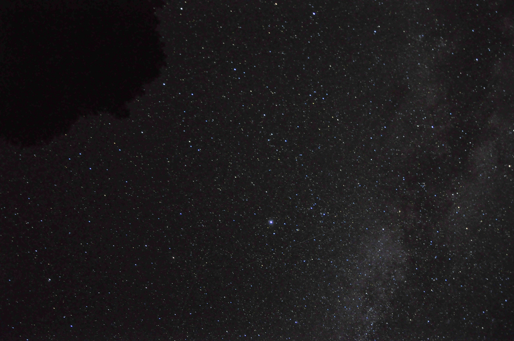 Nightlight1-Foto1500-030.JPG