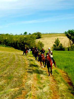HORSEBACK RIDING THROUGH VAL D'ORCIA