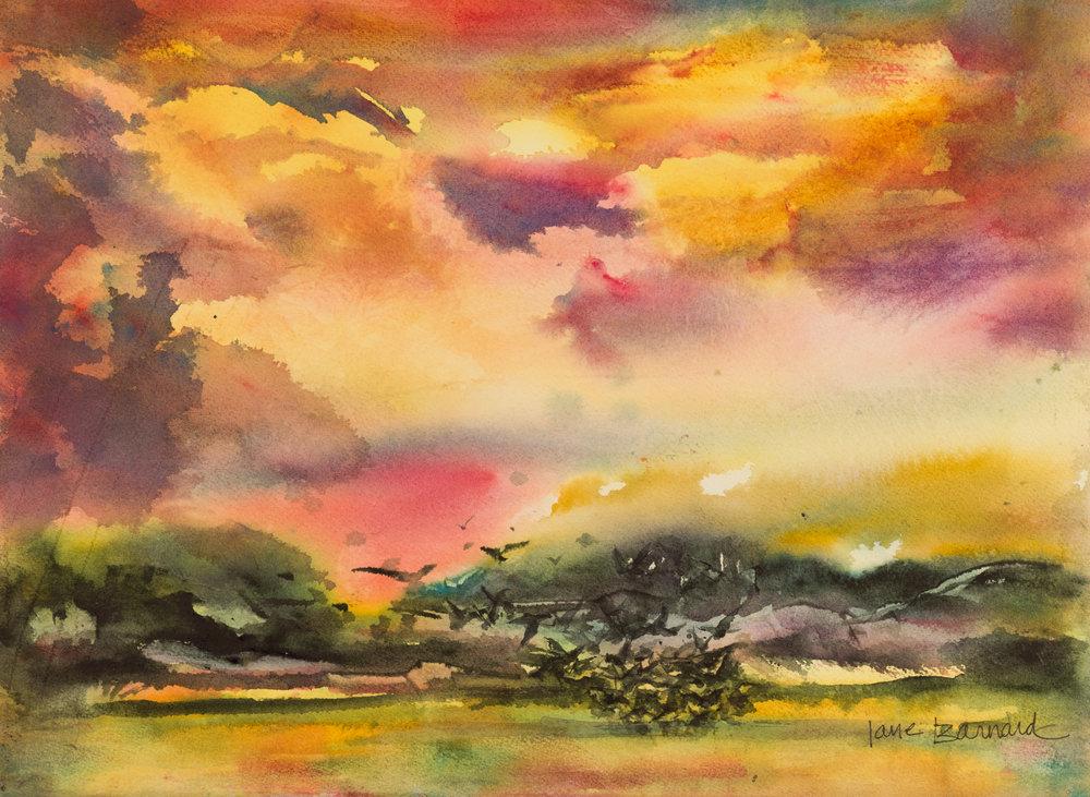 Sunset , Seabirds.jpg