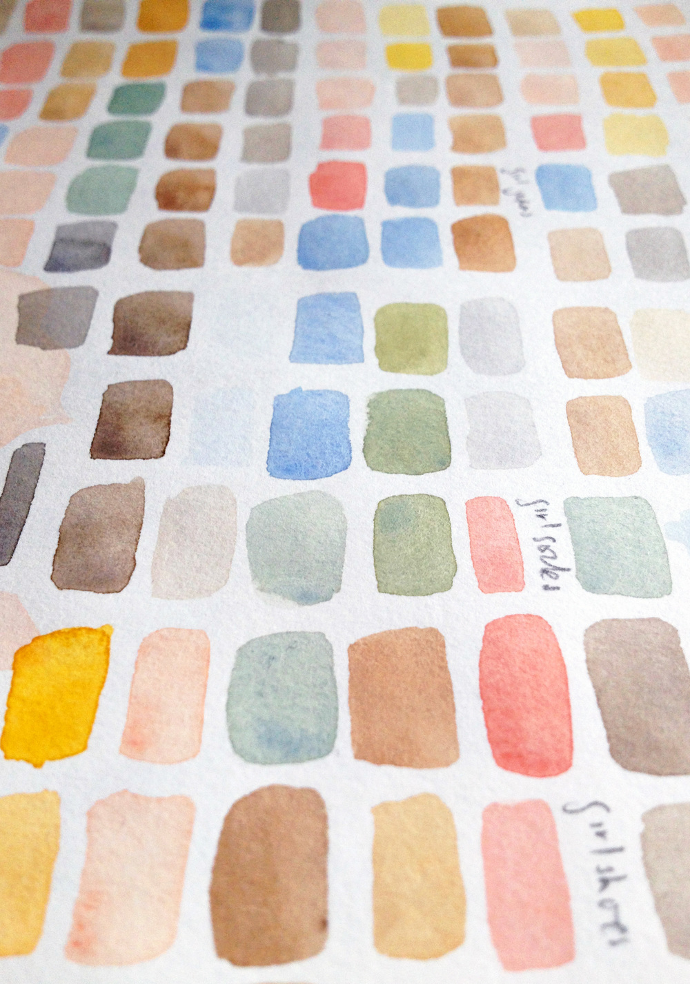 Ailsa_Burrows_Colour_Palette