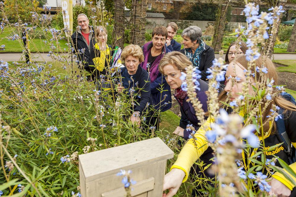 pollination_day_bees_kew_garden_9.jpg