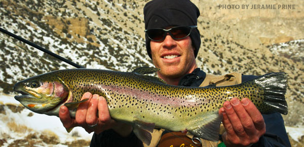 zach-even-art-flyrod-16.jpg