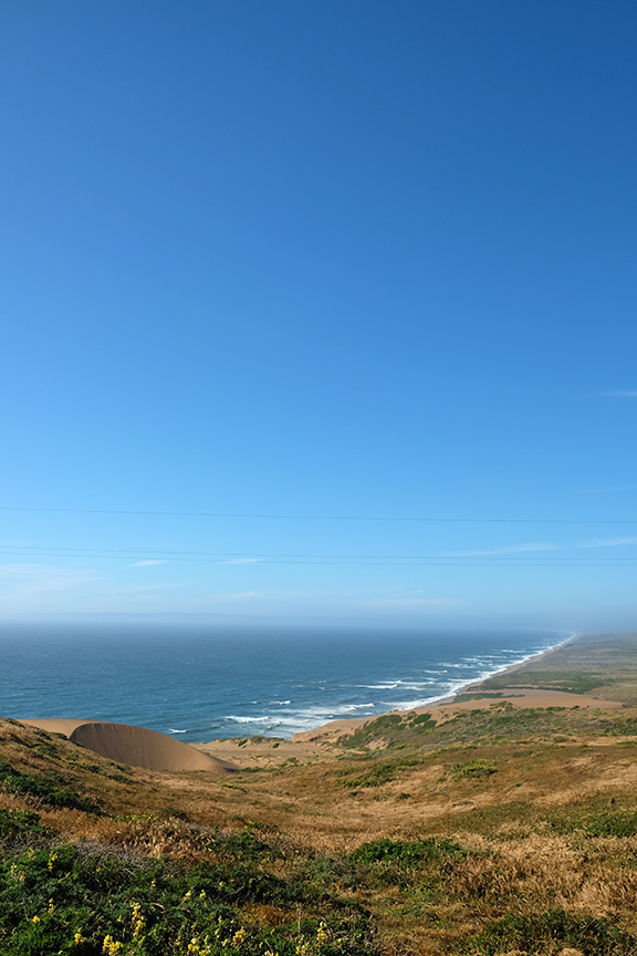 sand dunes at Point Reyes