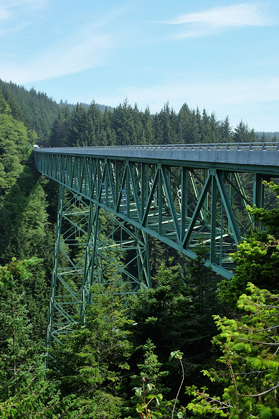 Highest bridge in OR at 345 feet. Note: tallest tree is 363 feet.