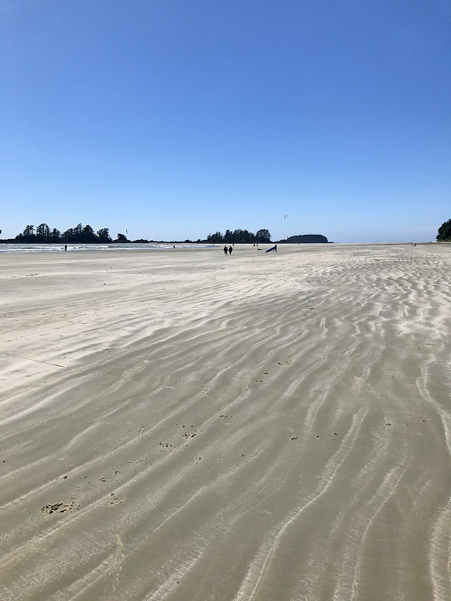 Chesterman beach
