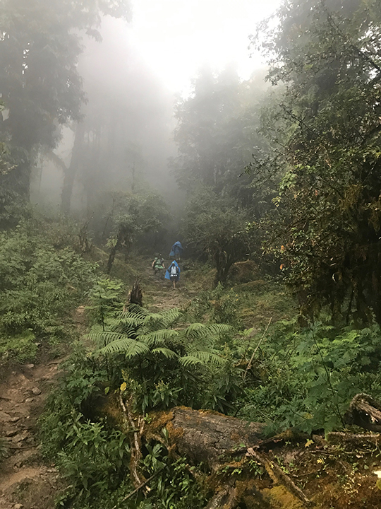 A misty descent