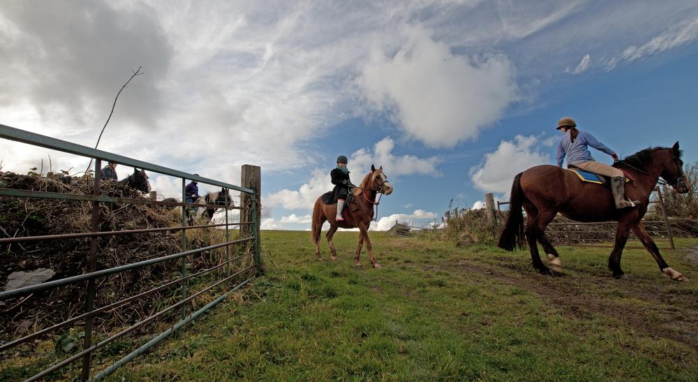 Horse Riding at Caffyn's Farm