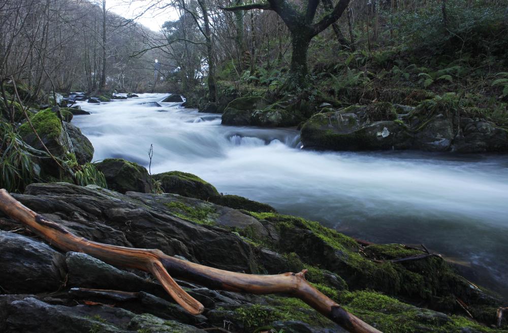 Rapids at Rockford