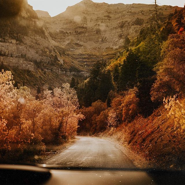 My favorite fall tradition with Tyler is driving around our favorite scenic loops, talking about life + dreamz, admiring the aspens, and then stuffing our faces @ Davanzas 🍂🍕🍁