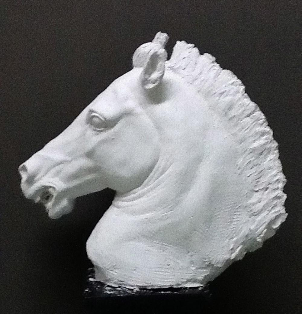 Cavallo, 2013