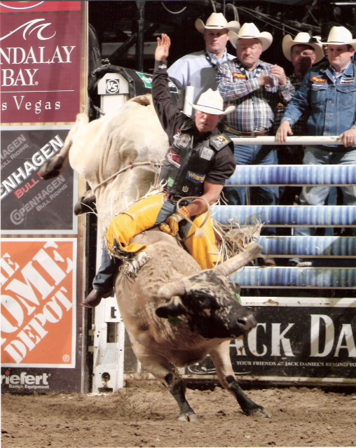 (SPLAT KAT)   Buck and cody Lemmons.  Lemmons Bucking Bulls.