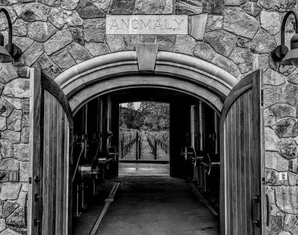 B&W Anomaly Winery.jpg