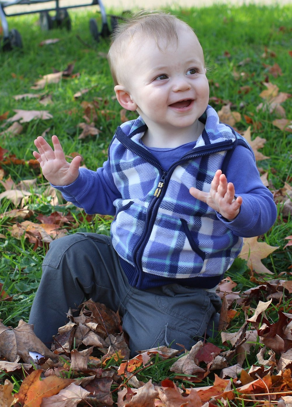 Julian, almost 1 whole year, playing in the leaves (photo by Carla Roehner)