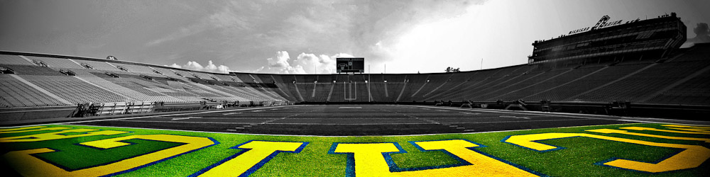 Low Field_Michigan Stadium)Adam Jacobs Photography.jpg