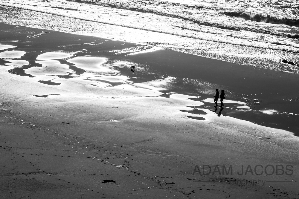 Adam Jacobs Photography California San Francisco Beach Landscape Fine Art Dog