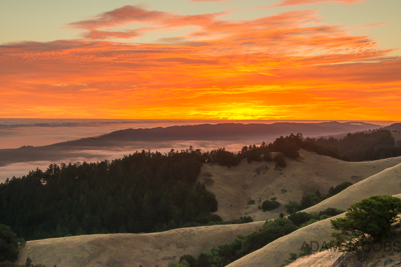 Mount Tam Sunset AJP-3.jpgAdam Jacobs Photography Sunset San Francisco Mount Tam Photography Workshops Classes Landscape Fine Art 4