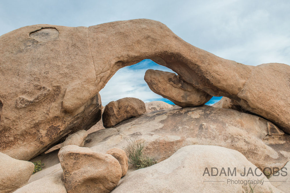 Arch Rock - Joshua Tree National Park which reminded me of a mini version of the arch in Canyonlands in Utah.