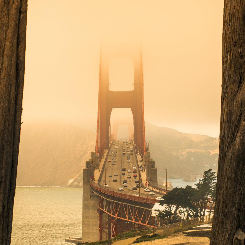 Adam Jacobs Photography Bay Area Photographs-15.jpg