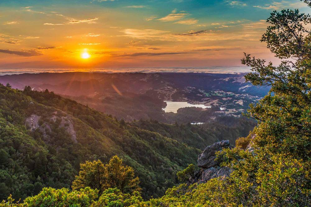 Mt Tam_Adam Jacobs-1.jpg