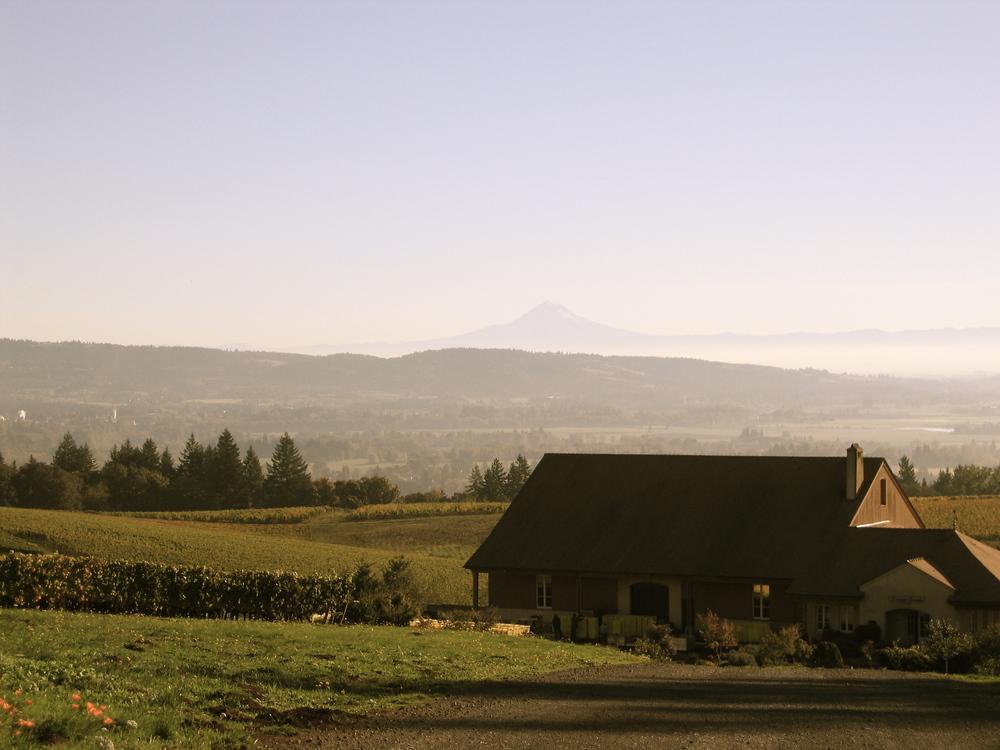 Domaine Drouhin Oregon in Willamette Valley, Oregon
