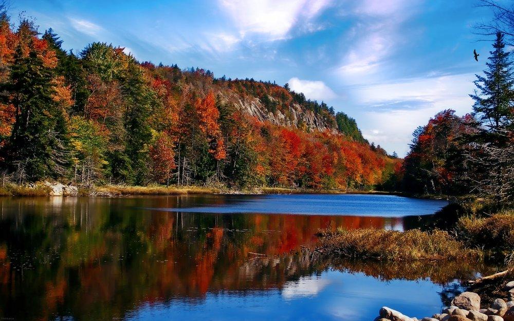 Adirondacks (3).jpg
