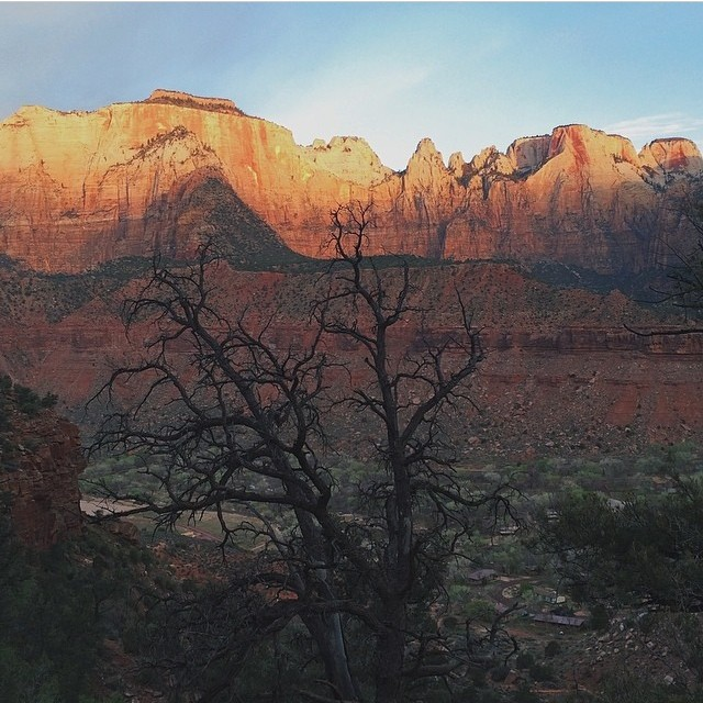 Zion National Park, Springdale, Utah | Happy Place of @ralfafara | #adventure #bucketlist #climb #discover #explore #free #gooutside #greatoutdoors #hike #happyplace #mountains #nature #naturegram #nationalpark #naturelover #natureaddict #neverstopexploring #outdoors #park #potd #rei1440project #sea #sky #sunlight #travelgram #travelgram #traveladdict #wander #wanderlust #zion