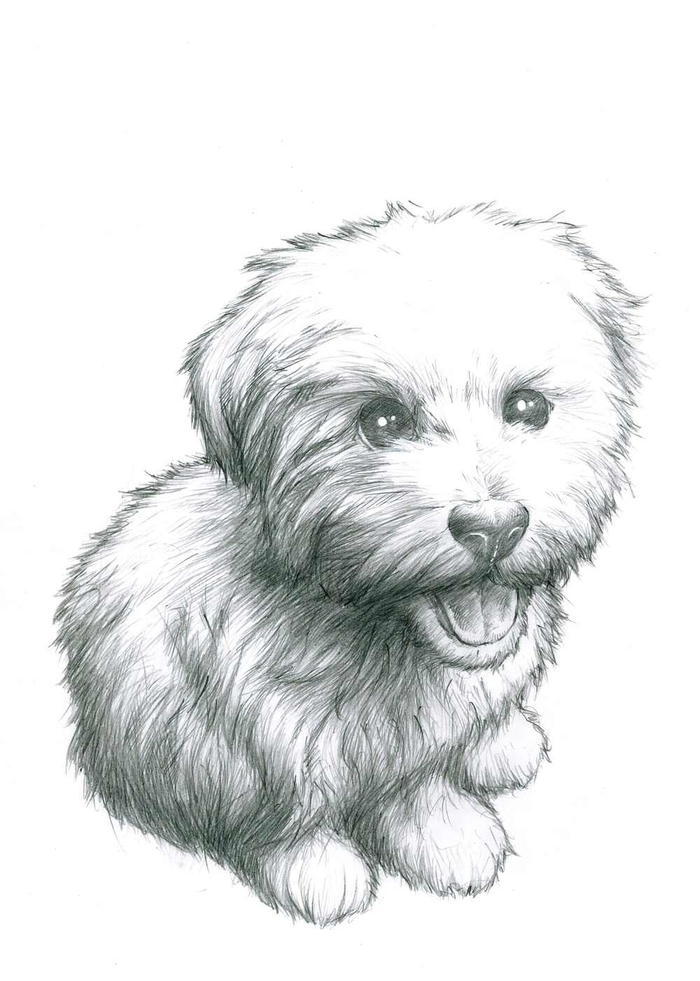 This piece was a request by a friend as a birthday present for his friend. He did not know the name of the dog so I called him Fluffernutter for the duration.